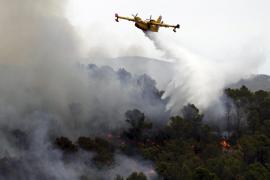 Ex-Forstbeamter legte Waldbrände