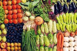Das Angebot an Bioprodukten auf Mallorca wird immer vielfältiger.