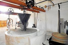 Zur Finca gehört eine Ölmühle.