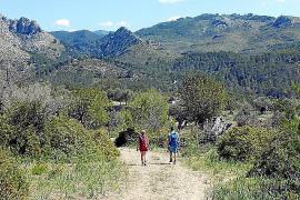Auf der Schotterstraße von Capdellà zur Finca Galatzó