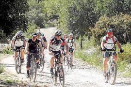 Manche Wege sind bei Mountainbikern beliebt.