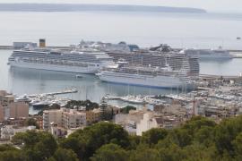 Soll Palmas Hafen privatisiert werden?