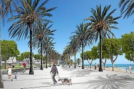 Fotomontage: Dort, wo jetzt Autos über den Passeig Marítim rasen, könnten in Zukunft Fußgänger unter Palmen flanieren.