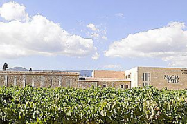 Das Konzert findet auf den Gelände der Bodega Macià Batle statt, direkt am Weinberg.