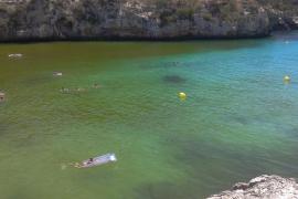 Cala Santanyí ganz in grün gefärbt