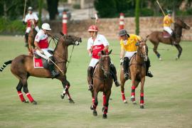 Polo-Turnier auf Mallorca.