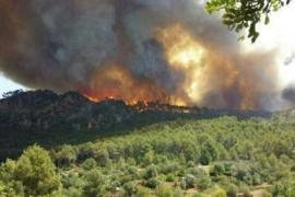 Brand in Andratx: 20 Häuser evakuiert