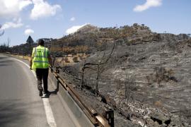 Waldbrandzone soll Katastrophengebiet werden