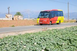 Per Bus über die Insel