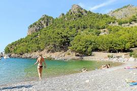 So sauber wie in Cala Tuent ist das Mittelmeer nur ganz selten. Der Strand besteht aus Kieselsteinen, am Rand der Bucht spenden