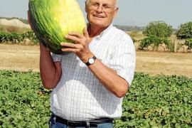 Mallorcas Melonen-König