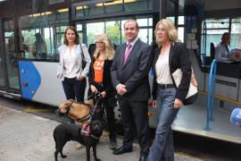 Hunde dürfen in Bussen der Linie 30 fahren
