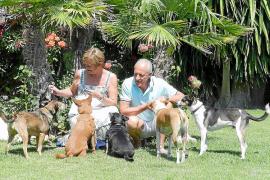 Aus dem Leben einer Hundefamilie