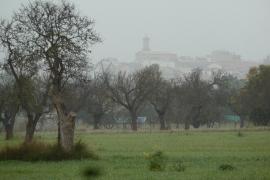 Wo Nebelbänke und graue Wolken wallen, präsentiert sich Mallorca in diesen Tagen wie auf diesen Foto aus der Inselebene bei Sant