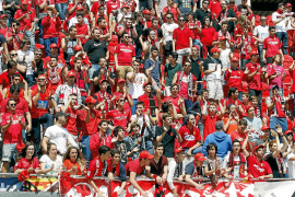 Fanclub-Vorsitzender traut Real Mallorca Wende zum Guten zu