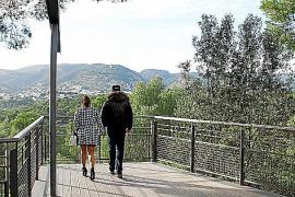 Spaziergang im Stadtwald.