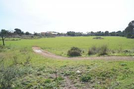 Themenhotel zum Radsport geplant