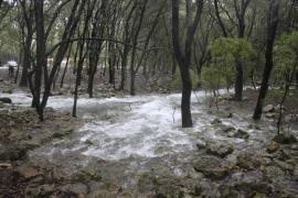 Grundwasserpegel bei 67 Prozent