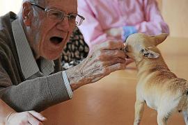 Streicheln, festhalten, bürsten: Mit den kleinen Hunden könne auch Beweglichkeit und Koordination trainiert werden.