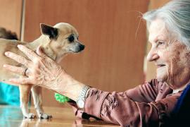 """Zuneigung, Nähe, Berührung - auch zur Befriedigung dieser Grundbedürfnisse leisten die Hunde einen Beitrag. """"Und sie urteilen ni"""