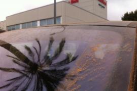 Nach der Fahrt ins Büro: Spuren des Lehmregens auf der Windschutzscheibe.