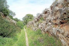 Der Zug fuhr durch einen Graben, der heute als Wanderweg genutzt werden könnte.
