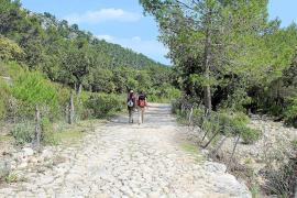 """Die Wanderwege rund um """"Galatzó"""" sind gut beschildert und meist leicht zu gehen. Die Routen dauern zwei bis vier Stunden."""