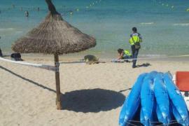 Wassersportler entdeckt Leiche im Meer