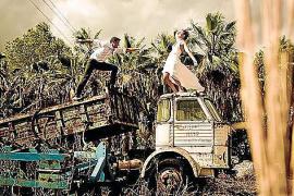 Ist das Kuba oder Costa Rica? Weder noch: Das Foto entstand zwischen Llucmajor und Campos.