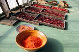 Schutz für Mallorcas rote Paprika
