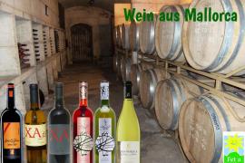 Wein aus Mallorca kennenlernen!