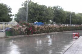 So sah es am Mittwochmorgen kurzzeitig in Palma aus.