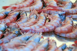 Jamie Oliver lobt Rote Gambas