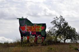 Mallorca-Stier kommt verliebt daher