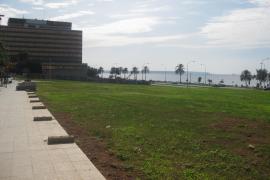 Palma bekommt grüne Wiese am Meer