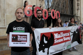 Opposition will Palma ohne Stierkampf