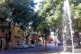 Viel Lob zollen die Einwohner dem Zustand der Grünzonen, wie hier an der Plaça Ramon Llull. Auch in der Fußgängerzone sind die B