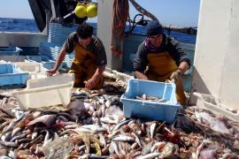 Fischer sollen Fänge vom Boot aus verkaufen können