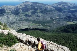 Mehr als 300 Kilometer Trockensteinwanderwege soll es eines Tages im Tramuntanagebirge geben.