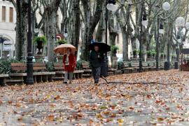 Besonders warmer November auf Mallorca
