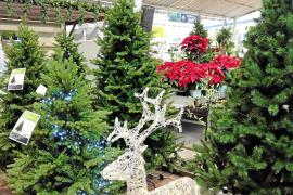 Die Weihnachtsbäume gehen aus