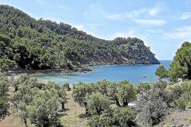 Die Cala Tuent im Nordwesten Mallorcas gehört zu den Stellen der Insel, an denen sich in den vergangenen 100 Jahren nicht allzu