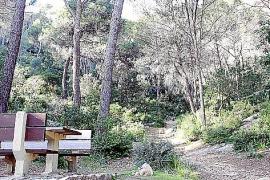 Ein Picknickplatz bei Caimari. Hier starten Wanderwege in den Bergwald. Ihre Zahl soll ausgebaut werden.