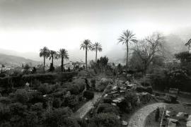 """""""Von einem zarten Nebel durchzogen"""": Hier der Botanische Garten von Sóller mit der Stadt im Hintergrund."""