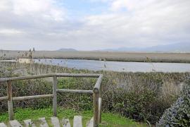 Ein System aus Kanälen, natürlichen Becken und Schleusen durchzieht den Naturpark bei Alcúdia.