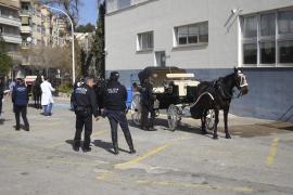 TÜV für Pferde und Kutschen