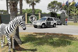 Zoo-Gegner sammelten 15.000 Unterschriften
