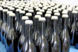 Bierflaschen, noch unettiketiert.