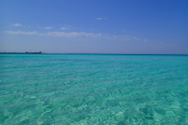 So wird der Mallorca-Sommer