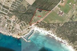 Auf diesem Bauplatz in Sa Rápita hätte das Hotel entstehen sollen.
